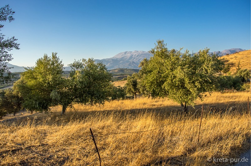 Musterbild Kreta Landschaft bei Sivas