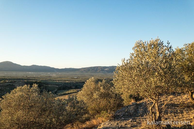 Ausblick über die Messara am frühen Morgen